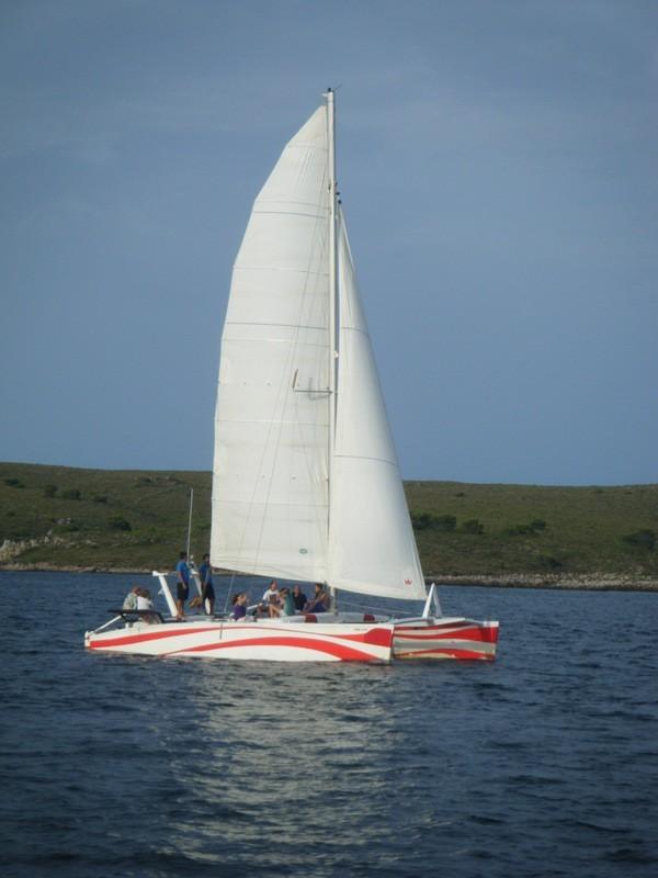 Catamaran privé à la demi-journée depuis Fornells