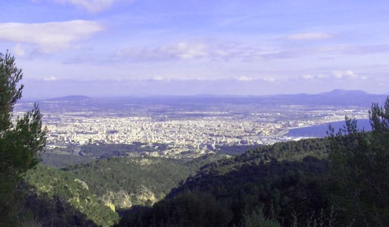 Panoramic views over Palma