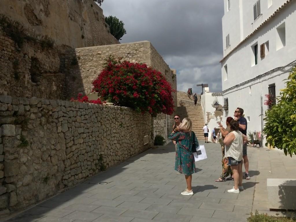 ibiza city tours