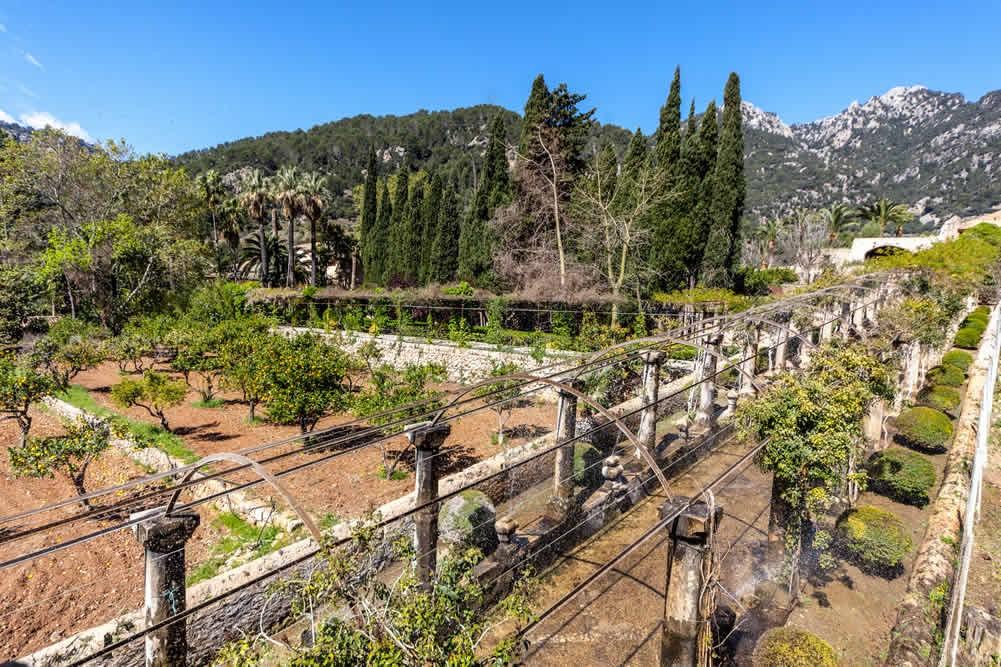 Alfabia Gardens