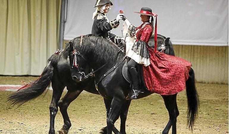 Menorquan horses