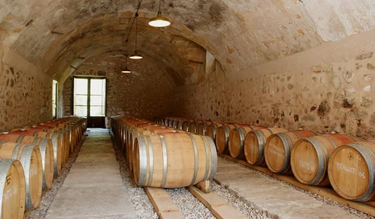 Winery visit Majorca