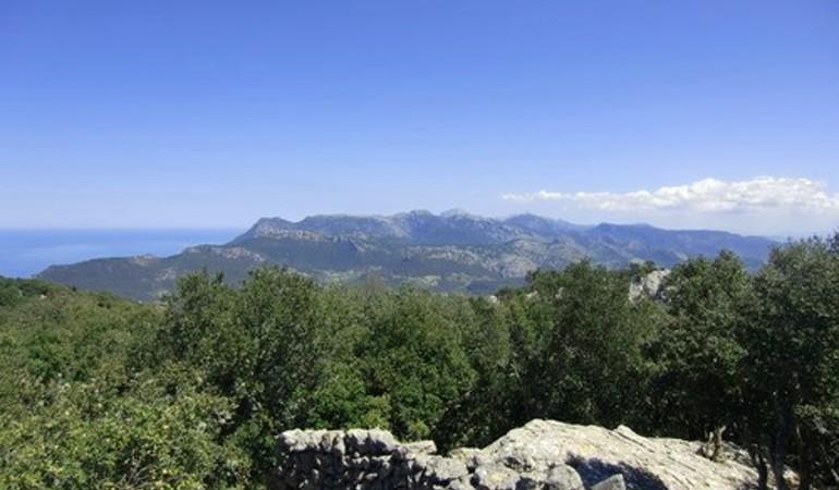 Panoramic views over Esporles