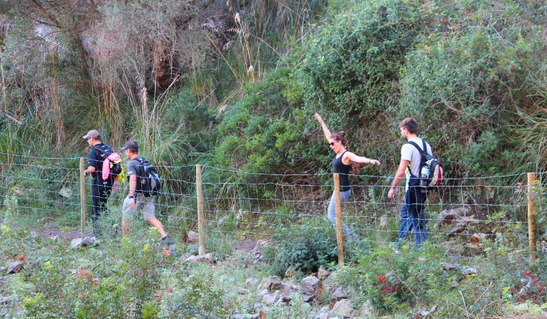 Hiking tour in Esporles