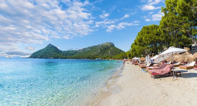 Formentor & Alcudia beach