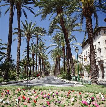 Palma City Xperience Paseo Marítimo