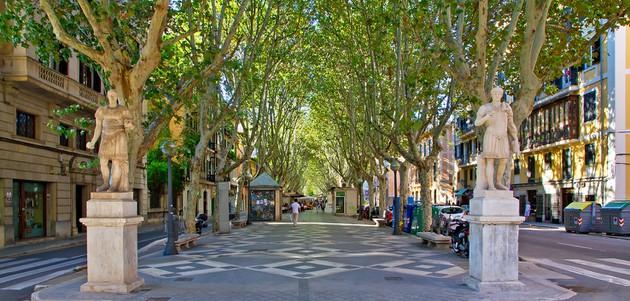 Palma City Xperience Paseo del Borne