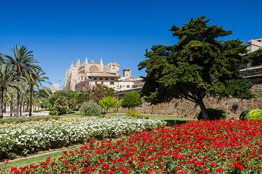 Palma City Xperience Catedral