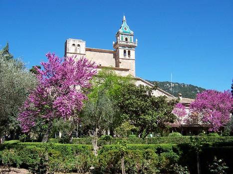 Palma Guided tour & Valldemossa visit